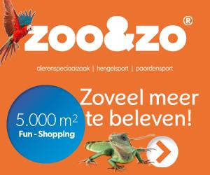 Zoo-enzo.nl cashback